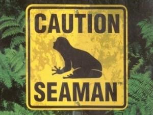 Seaman crossing